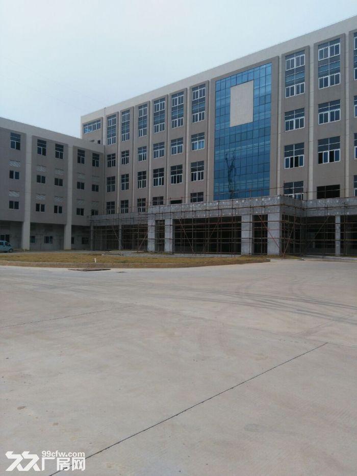 萝岗东区标准厂房三楼1050平方招租-图(1)
