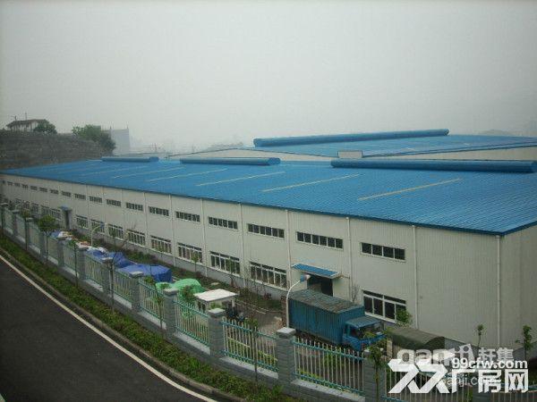 两江新区25000钢构厂房仓库12米可合作联营-图(3)