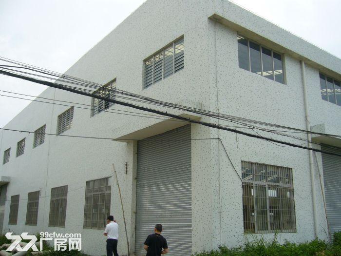 大沙镇马房工业区6000平方米全新租11/平方米-图(2)