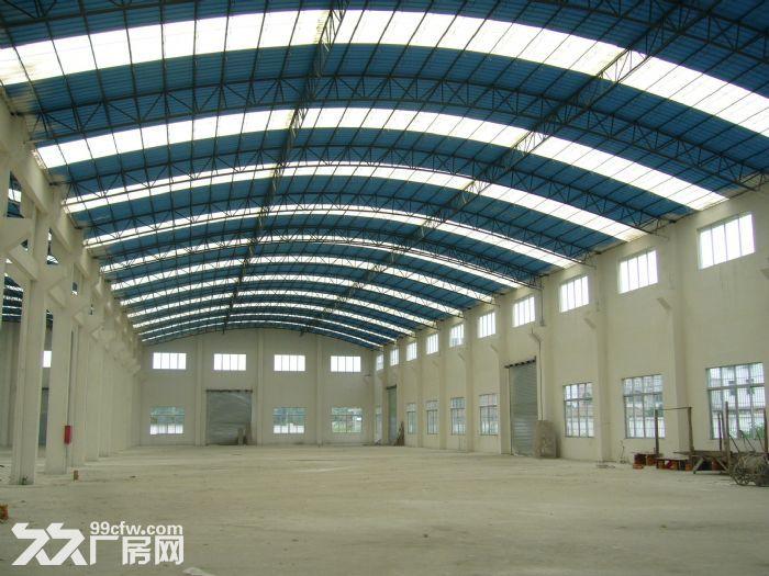 大沙镇马房工业区6000平方米全新租11/平方米-图(4)