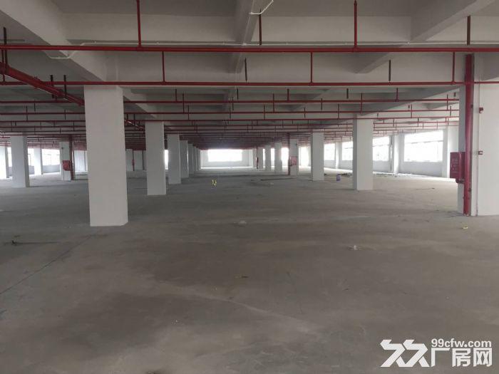 东莞凤岗镇20万平方电商仓库厂房出租可分租10元起租-图(3)