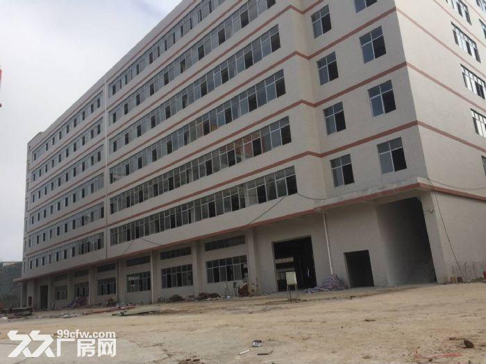 东莞凤岗镇20万平方电商仓库厂房出租可分租10元起租-图(6)