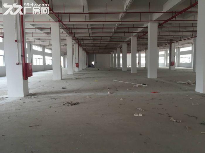 东莞凤岗镇20万平方电商仓库厂房出租可分租10元起租-图(5)