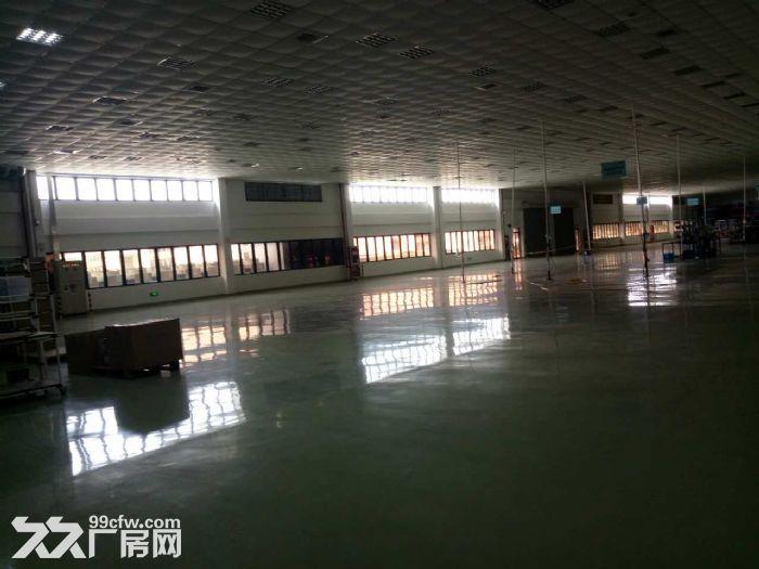 胜浦火车头式单层厂房6000平精装修好-图(5)