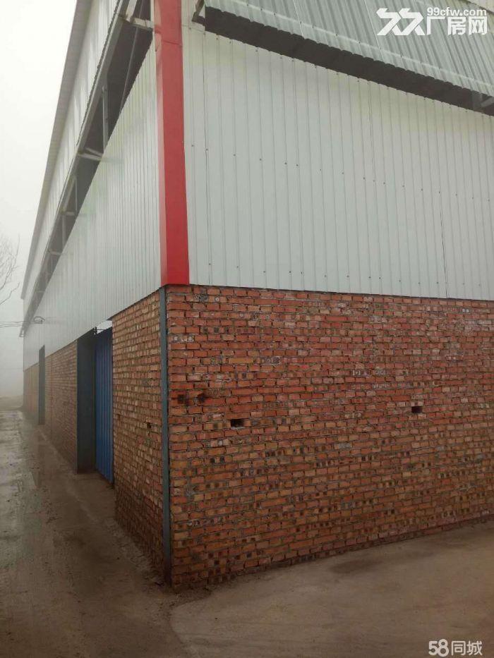 新建厂房出租,整租、零租、合作均可,水、电等基础设施齐全-图(3)