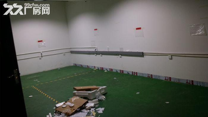 全新标准厂房(带有3吨和2吨电梯)-图(4)