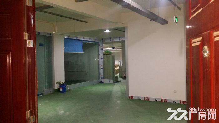 全新标准厂房(带有3吨和2吨电梯)-图(6)