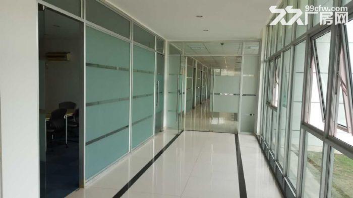 苏州园区独幢8000平米单层精装好厂房出租-图(2)