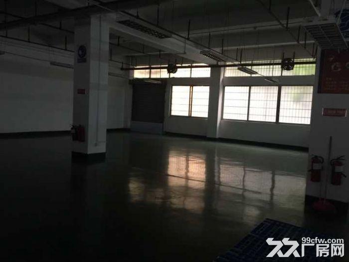 广州开发区首层标准带装修厂房1500m²出租-图(2)