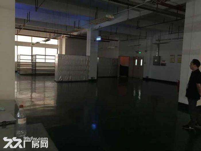 广州开发区首层标准带装修厂房1500m²出租-图(3)