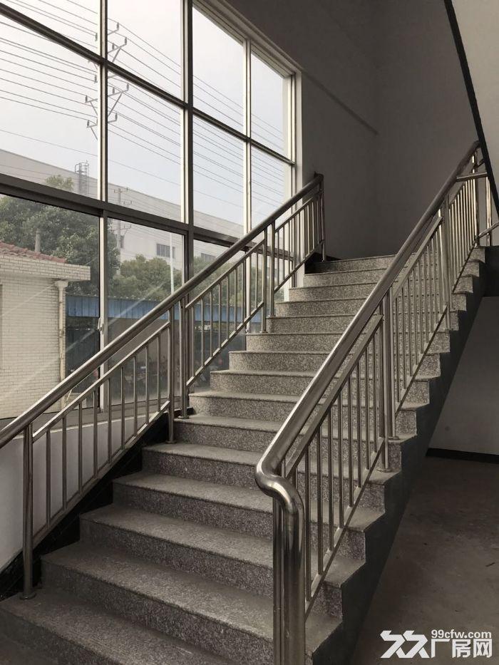 全新厂房出租,出租楼上2层-图(3)