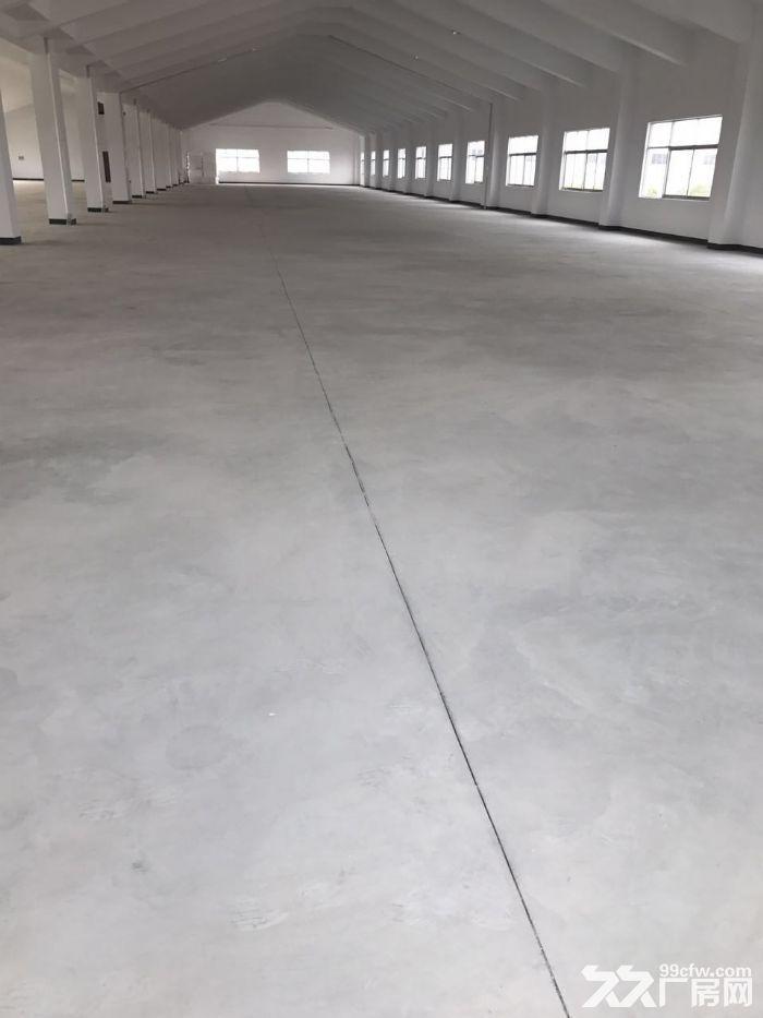全新厂房出租,出租楼上2层-图(4)