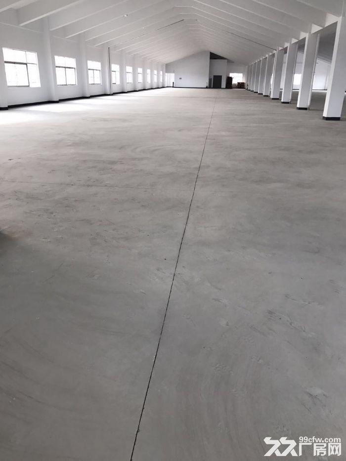 全新厂房出租,出租楼上2层-图(6)