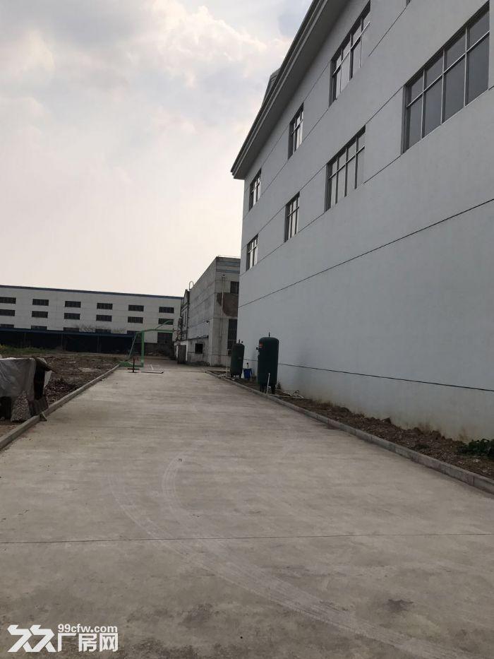 全新厂房出租,出租楼上2层-图(7)
