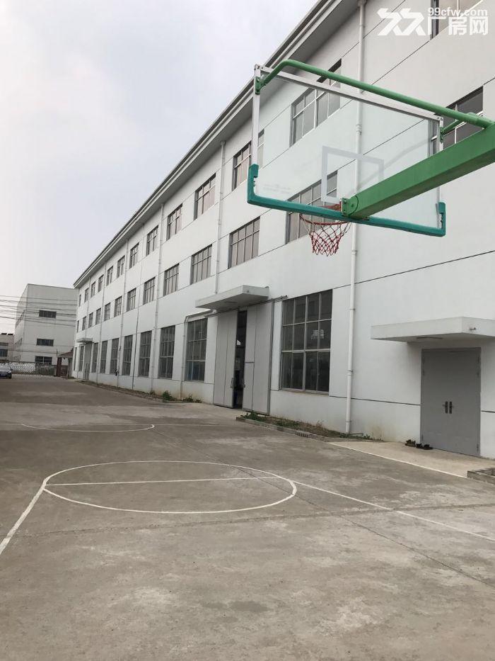全新厂房出租,出租楼上2层-图(8)