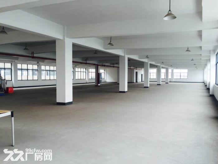 6元1平方距考试中心200米东港八路帮麻辣鱼位置厂房出租-图(8)