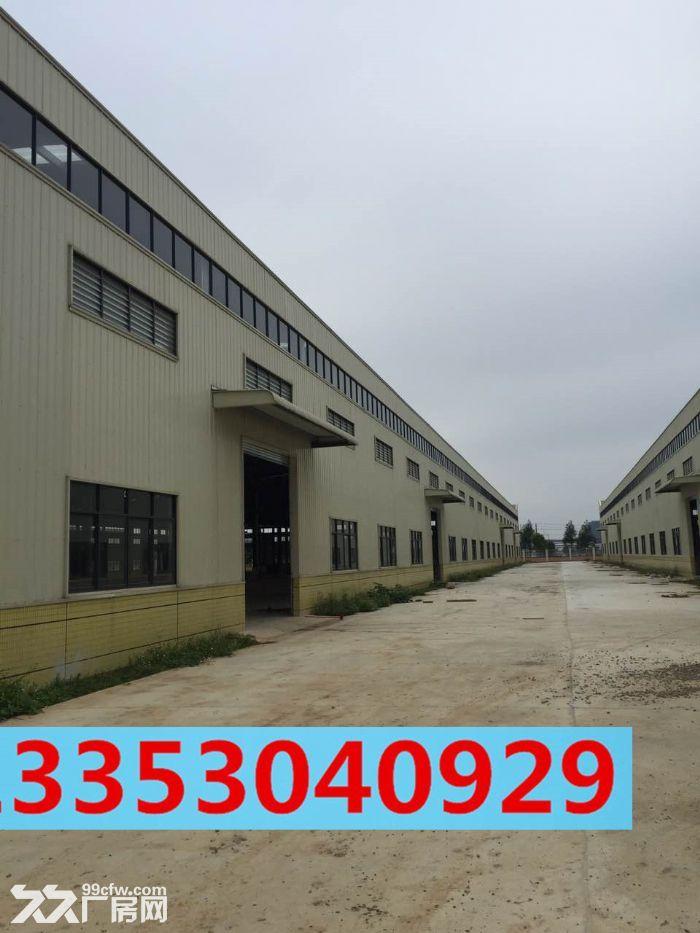 24000方标准钢结构厂房,可分租-图(3)