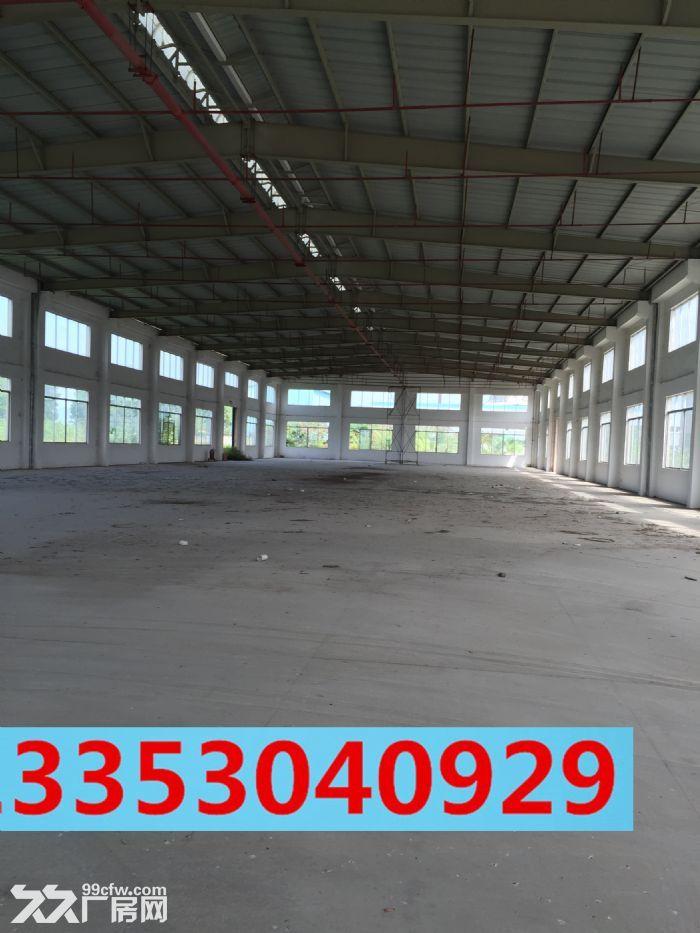 24000方标准钢结构厂房,可分租-图(4)