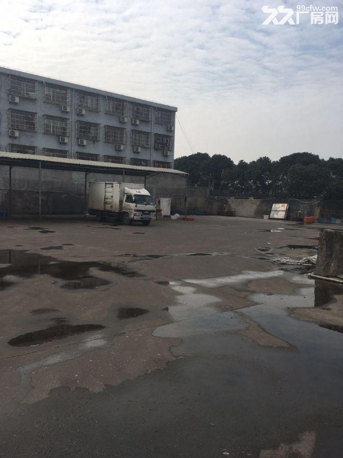 甬江街道路林村土地出租(近路林市场)-图(2)