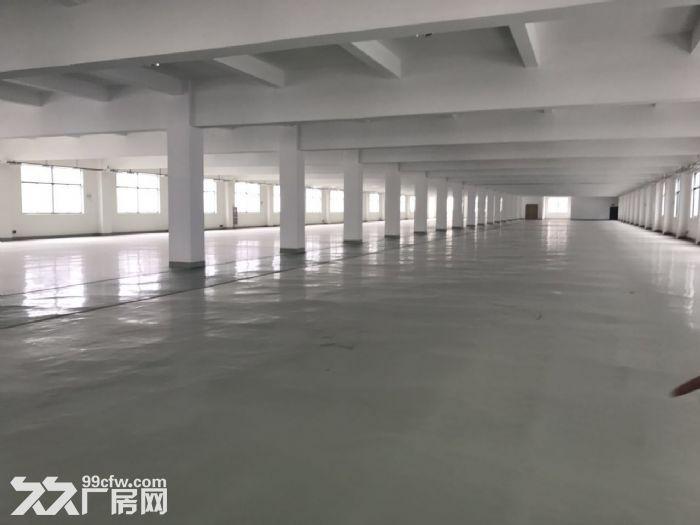 滨湖区胡埭镇园区独栋3层11000㎡标准厂房出租-图(2)