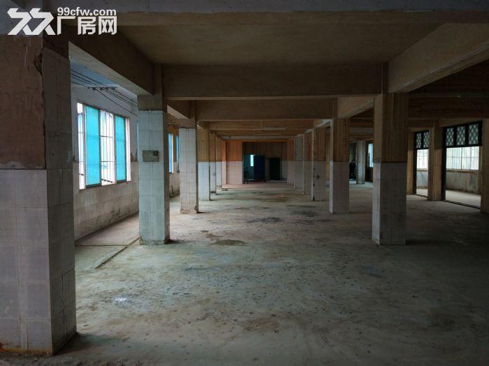 花溪西站厂房库房出租-图(3)