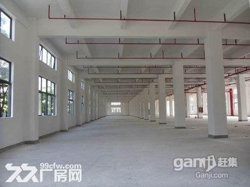 龙岗新生一楼厂房精装700m²-图(2)