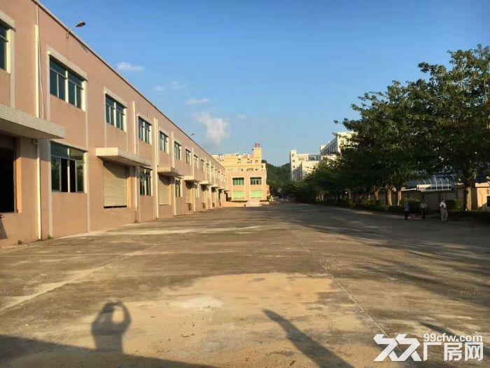 东莞凤岗电商贸易物流仓库出租18000平方-图(2)
