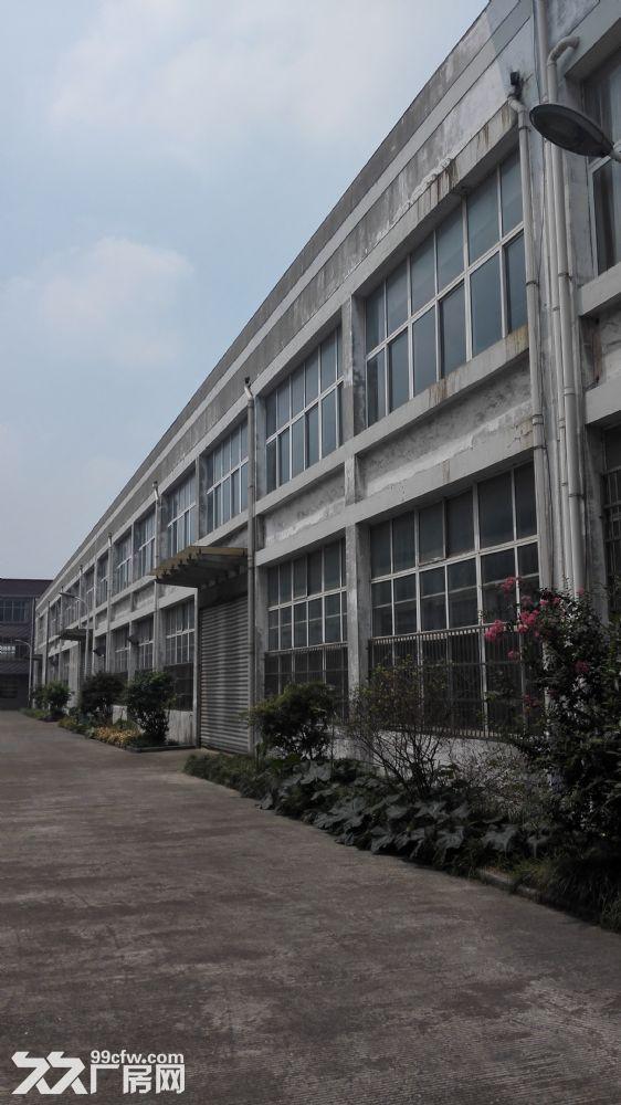 丹北镇厂房出租,交通便利,设施齐整-图(1)