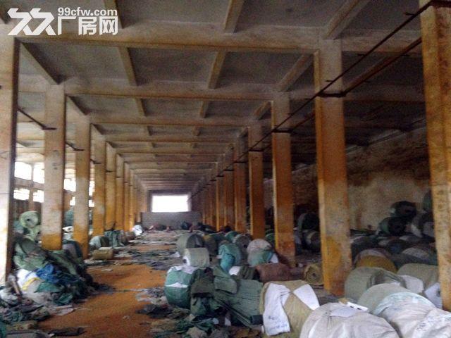 (出租)出租南宁市兴宁区三塘镇农垦玻璃厂内大型双层厂房-图(3)