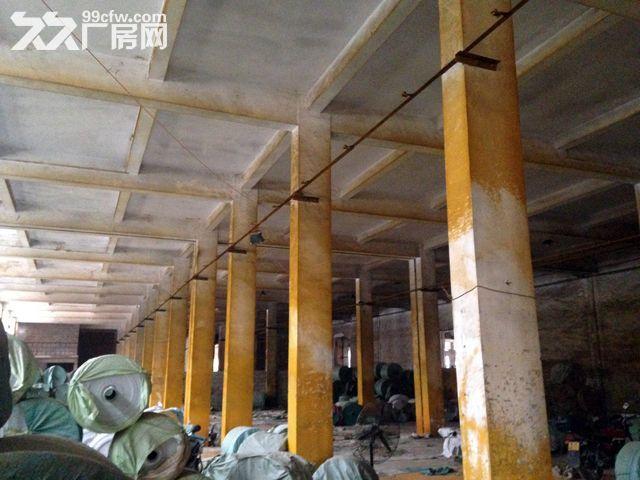 (出租)出租南宁市兴宁区三塘镇农垦玻璃厂内大型双层厂房-图(4)