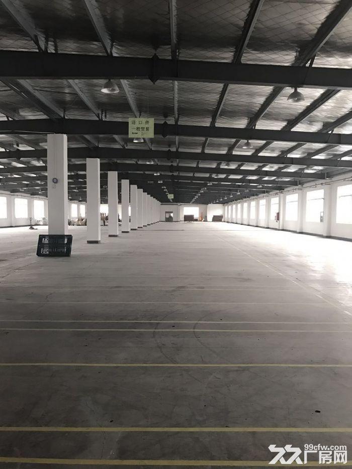 新区梅村金城东路高架旁6600平米可以分租-图(3)