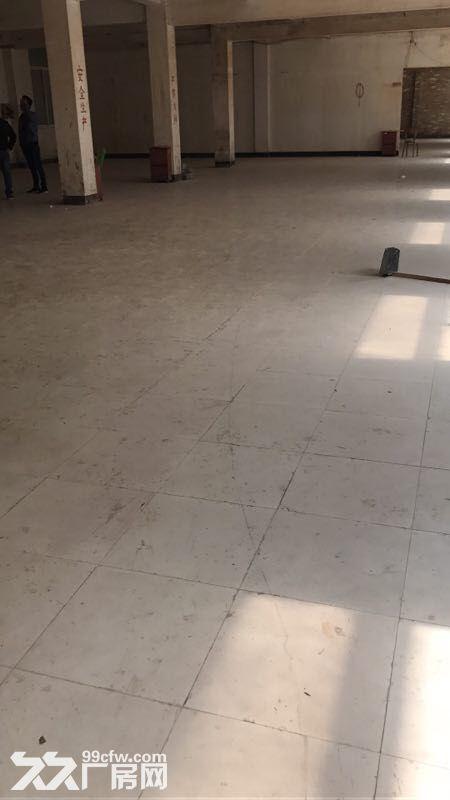 江桥翔江公路独栋厂房出租-图(1)