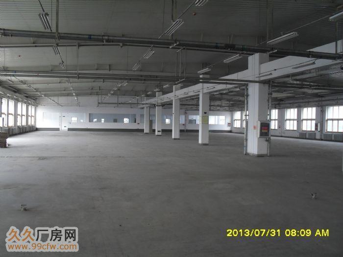 大连开发区仓储、厂房、宿舍、办公楼出租,面积7000平。-图(4)
