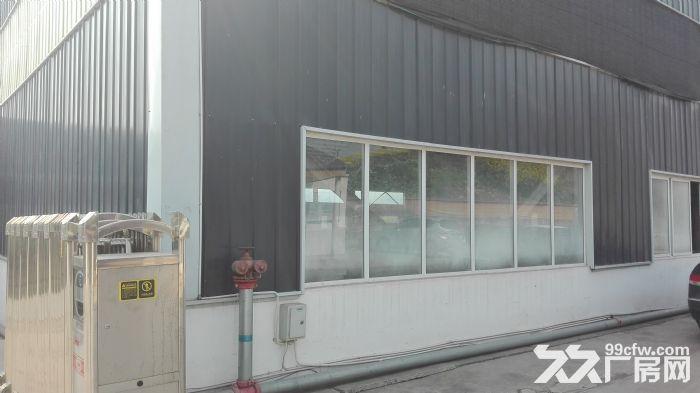 内江市威远县龙会镇标准钢结构厂房出租(3300平方)-图(4)