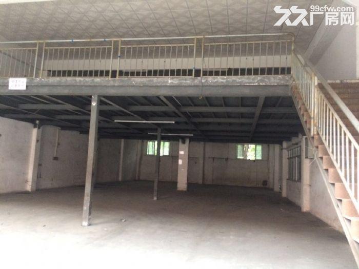 均安6500方独门独院厂房招租-图(2)