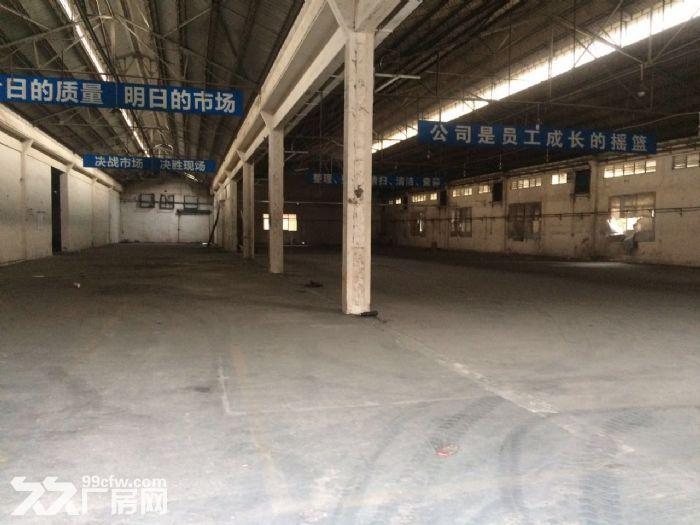 均安6500方独门独院厂房招租-图(3)