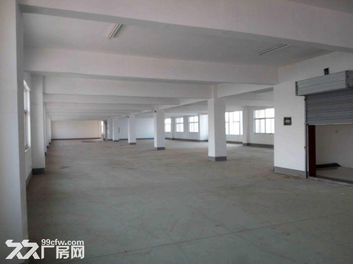 2000平米厂房出租-图(2)