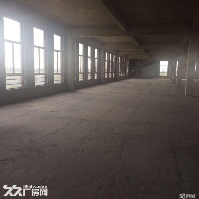 产业园厂房一期圆满结束,二期火爆认购-图(3)