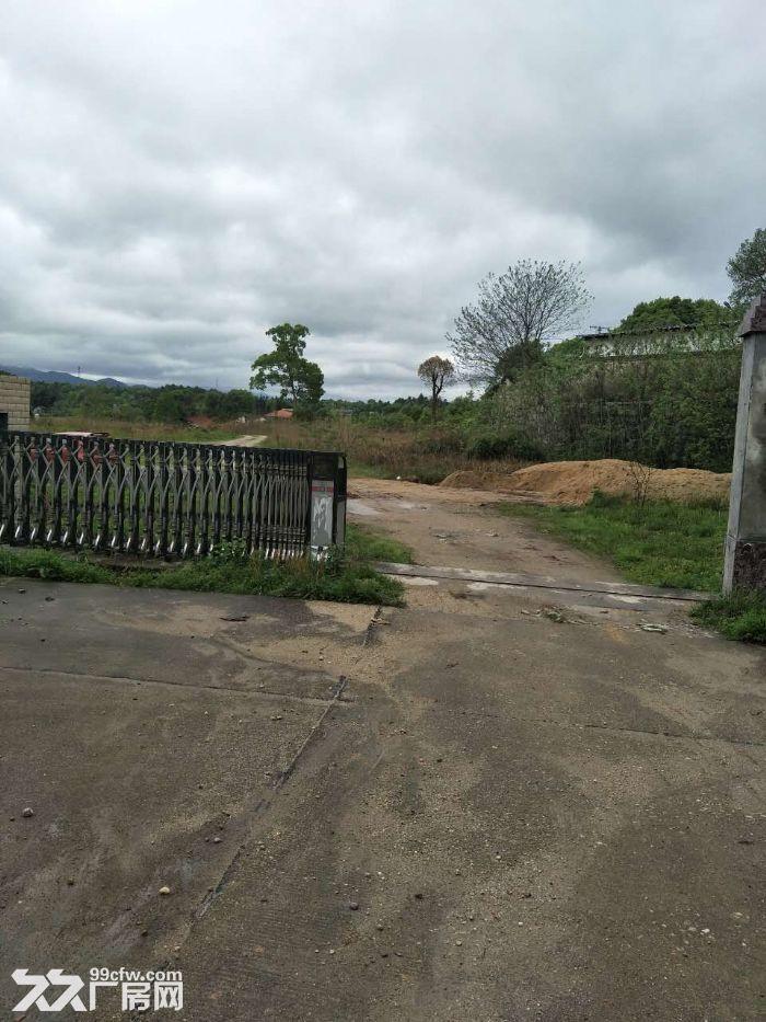 北山镇出售优质土地出售-图(2)