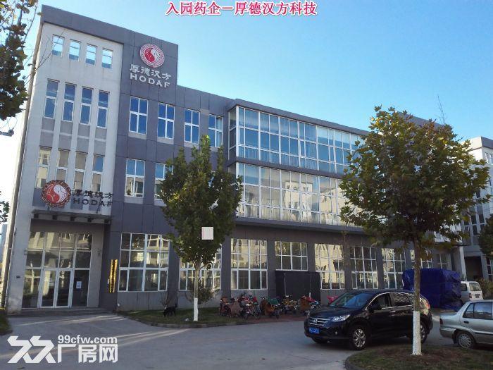 【医药及医疗器械首选】3600平米医疗器械园50年产权厂房-图(5)