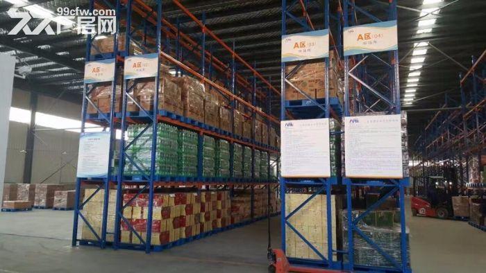 甘肃兰州新星网仓储标准立体仓库出租、新建冷库出租、专业仓储服务-图(3)