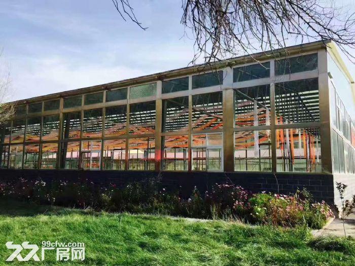 乌鲁木齐市水磨沟区八道湾带院厂房2栋永久场地找项目-图(1)