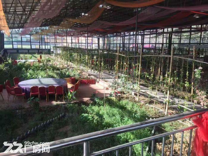 乌鲁木齐市水磨沟区八道湾带院厂房2栋永久场地找项目-图(2)
