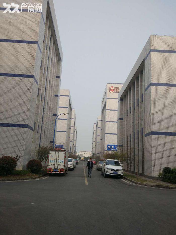 武汉光谷生产厂房出租-图(3)