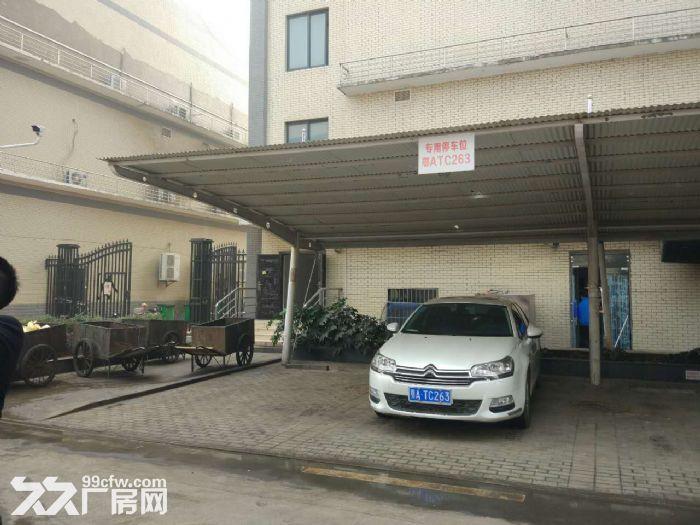 武汉光谷生产厂房出租-图(2)