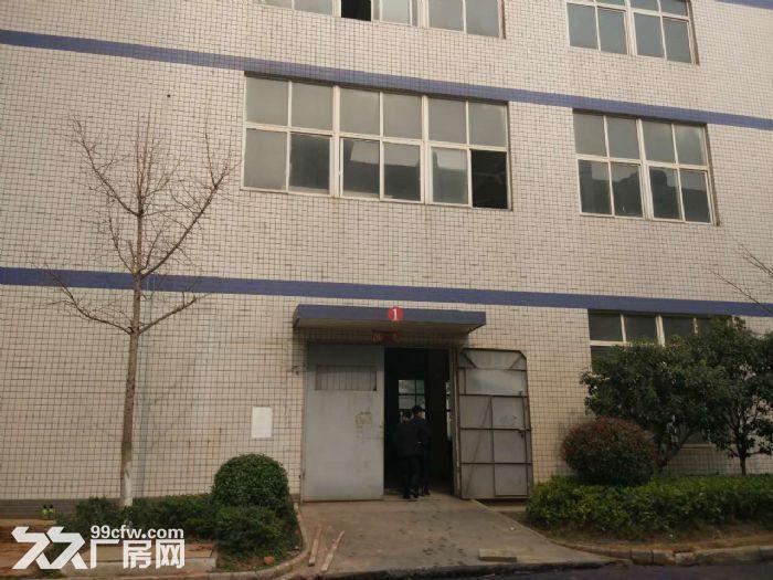 武汉光谷生产厂房出租-图(4)