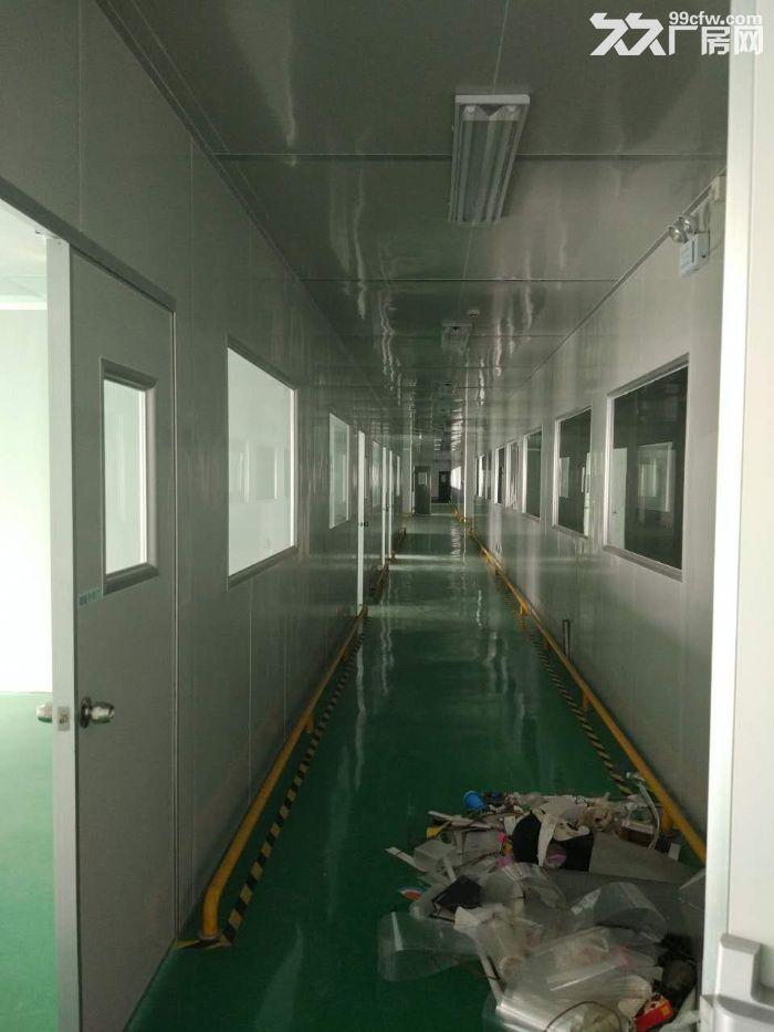 武汉光谷生产厂房出租-图(5)
