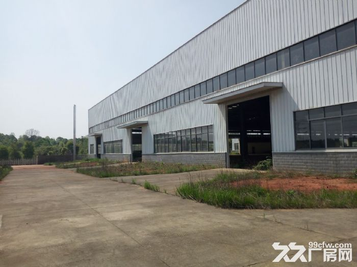 益阳高新区9000平米标准钢结构厂房出售