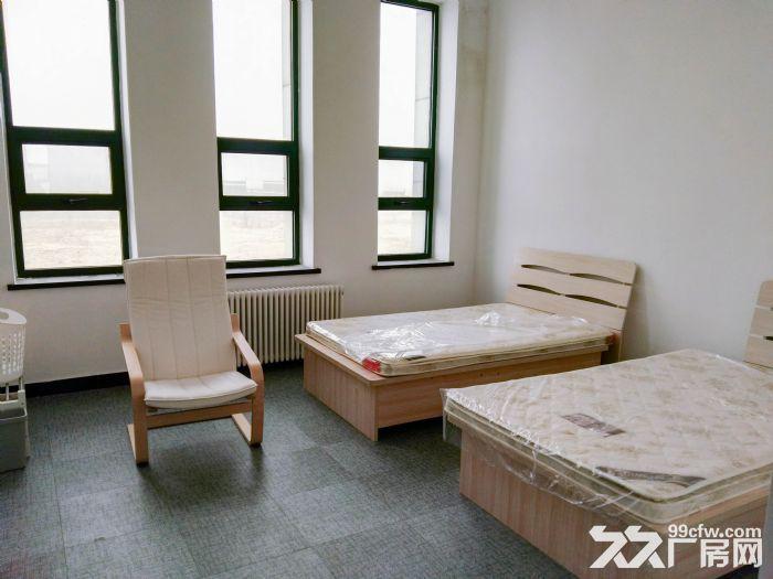 大连长兴岛临港工业区全新好厂房-图(7)
