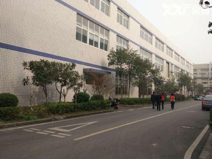 江夏区经济开发区藏龙岛厂房出租-图(1)